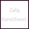 Etiket vierkant 30x30mm wit + opdruk zilver ZALIG KERSTFEEST - EV3ZK