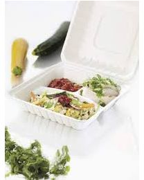 Duni ECOECHO Meal Box bagasse wit 236x231x81mm 350/2x120ml scharnierdeks 3 comp