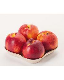Tray pulp AGF bruin 175x175x45mm, 4 vruchten PF804N
