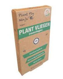 Plant Fly Ninja navulling voor Combi Display: 24 verpakkingen (4st)
